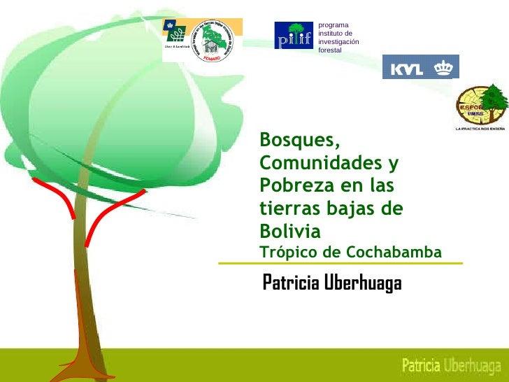 Bosques, Comunidades y Pobreza en las  tierras bajas de Bolivia Tr ó pico de Cochabamba <ul><ul><li>Patricia Uberhuaga </l...