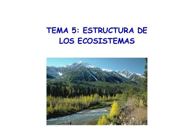 TEMA 5: ESTRUCTURA DE LOS ECOSISTEMAS