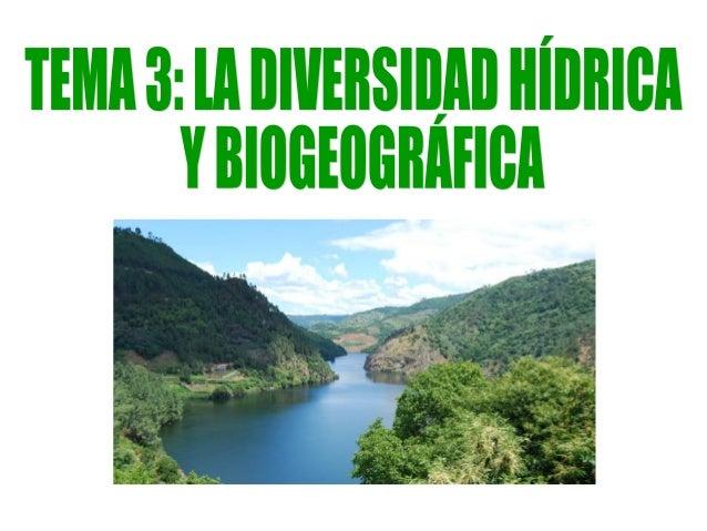 1. La diversidad hídrica.