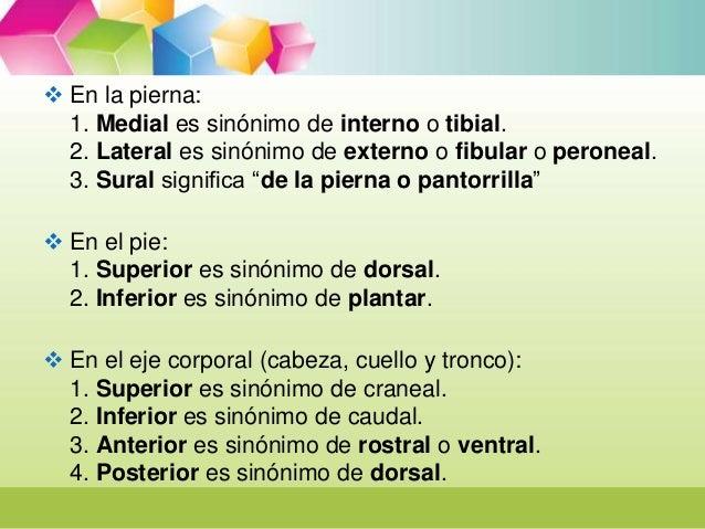 presentacion terminologia de la salud 2