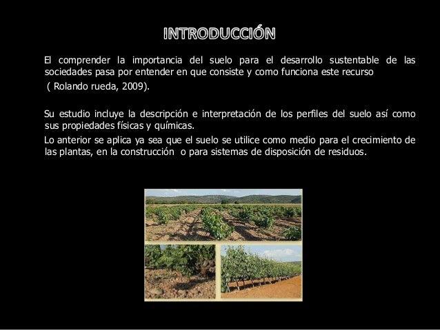 Presentacion tipos de suelos - Tipos de suelos ...