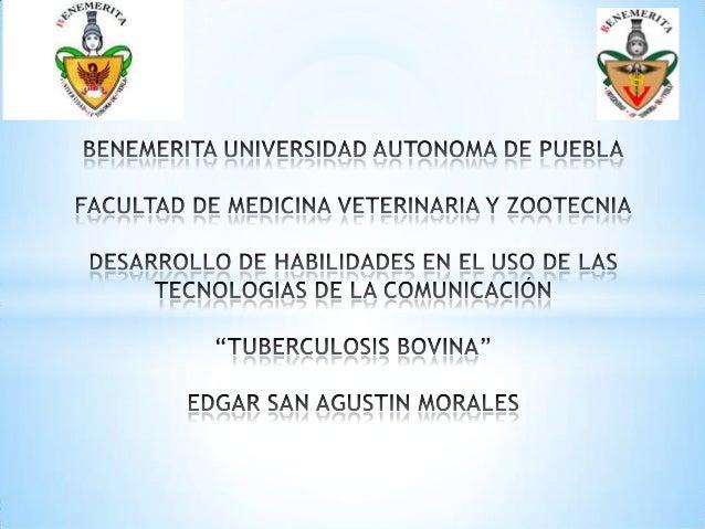 * La tuberculosis bovina es una enfermedad infectocontagiosa que  afecta al ganado bo-vino produciendo un cuadro crónico, ...