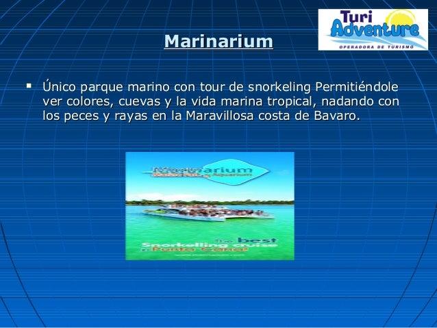 MarinariumMarinarium  Único parque marino con tour de snorkeling PermitiéndoleÚnico parque marino con tour de snorkeling ...