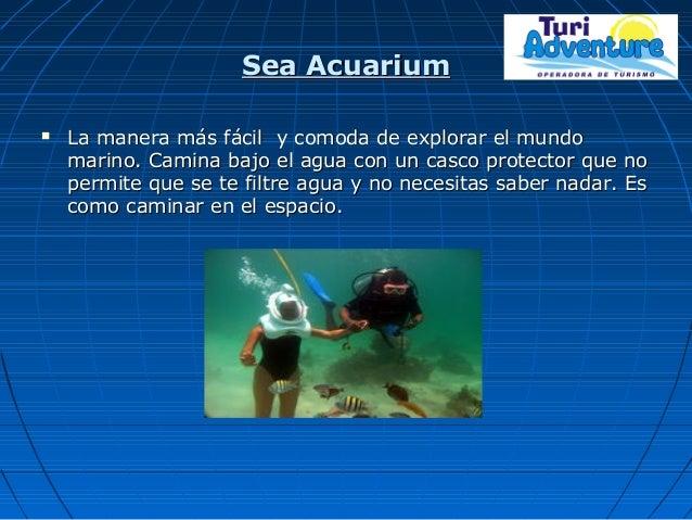 Sea AcuariumSea Acuarium  La manera más fácil y comoda de explorar el mundoLa manera más fácil y comoda de explorar el mu...