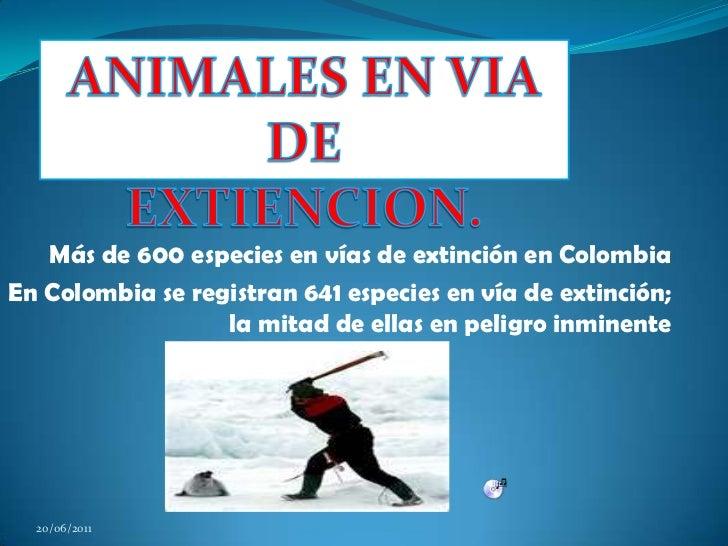 ANIMALESEN VIA DE<br />EXTIENCION.<br />Más de 600 especies en vías de extinción en Colombia<br />En Colombia se registran...