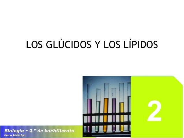 LOS GLÚCIDOS Y LOS LÍPIDOS  Biología • 2.º de bachillerato  Saro Hidalgo