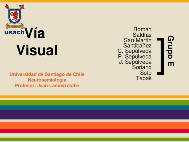 Vía  Visual  Román  Saldías  San Martín  Santibáñez  C. Sepúlveda  P. Sepúlveda  J. Sepúlveda  Soriano  Soto  Tabak  Unive...