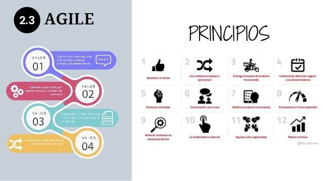 2.3 AGILE PRINCIPIOS