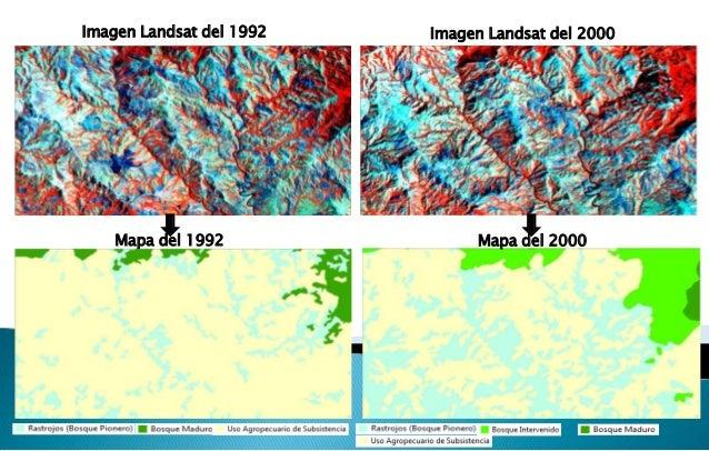 1992 (Landsat) 2000 (Landsat) 2012 (Rapideyes)
