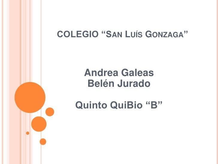 """COLEGIO """"San Luís Gonzaga""""<br />Andrea GaleasBelén JuradoQuinto QuiBio """"B""""<br />"""