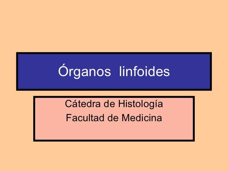 Órganos  linfoides Cátedra de Histología Facultad de Medicina