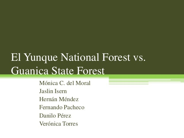 El Yunque National Forest vs. Guanica State Forest Mónica C. del Moral Jaslin Isern Hernán Méndez Fernando Pacheco Danilo ...