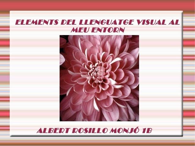 ELEMENTS DEL LLENGUATGE VISUAL AL MEU ENTORN ALBERT ROSILLO MONJÓ 1B