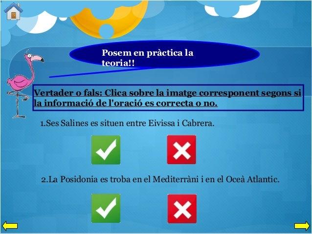Posem en pràctica la teoria!! Vertader o fals: Clica sobre la imatge corresponent segons si la informació de l'oració es c...
