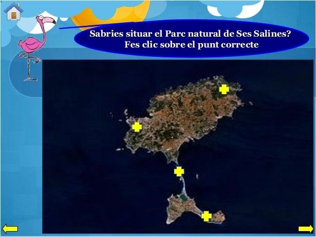 Sabries situar el Parc natural de Ses Salines? Fes clic sobre el punt correcte