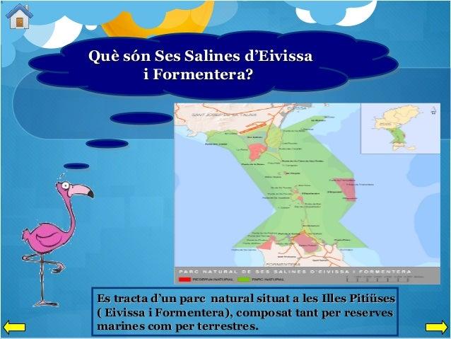Què són Ses Salines d'Eivissa Què són Ses Salines d'Eivissa i Formentera? i Formentera?  Es tracta d'un parc natural situa...