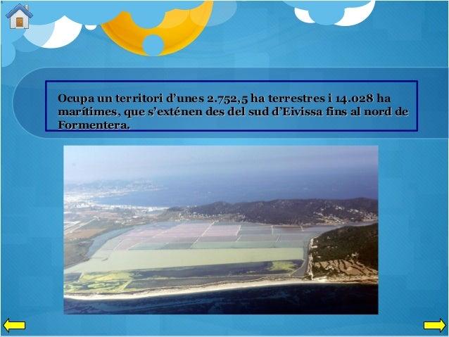 Ocupa un territori d'unes 2.752,5 ha terrestres i 14.028 ha marítimes, que s'exténen des del sud d'Eivissa fins al nord de...