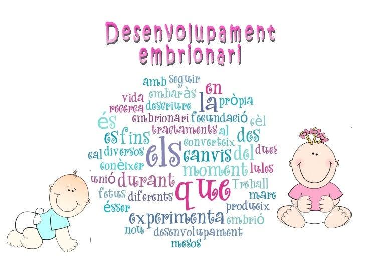 Desenvolupament embrionari