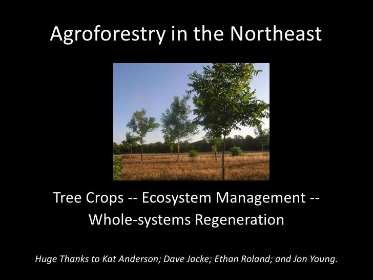 Agroforestry in the Northeast<br />Tree Crops -- Ecosystem Management --<br />Whole-systems Regeneration<br />Huge Thanks ...