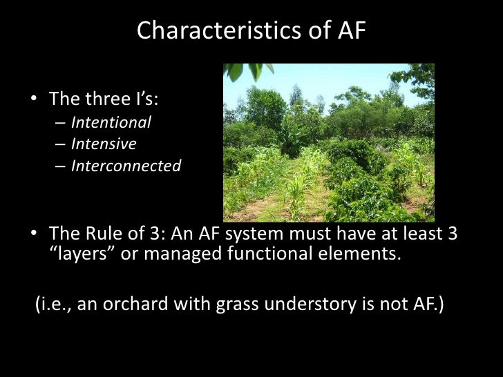 Agroforestry in the Northeast Slide 3