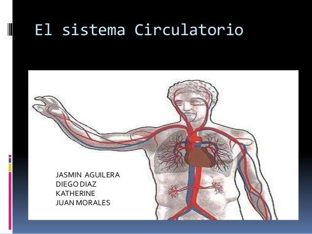 El sistema Circulatorio  JASMIN AGUILERA  DIEGO DIAZ  KATHERINE  JUAN MORALES