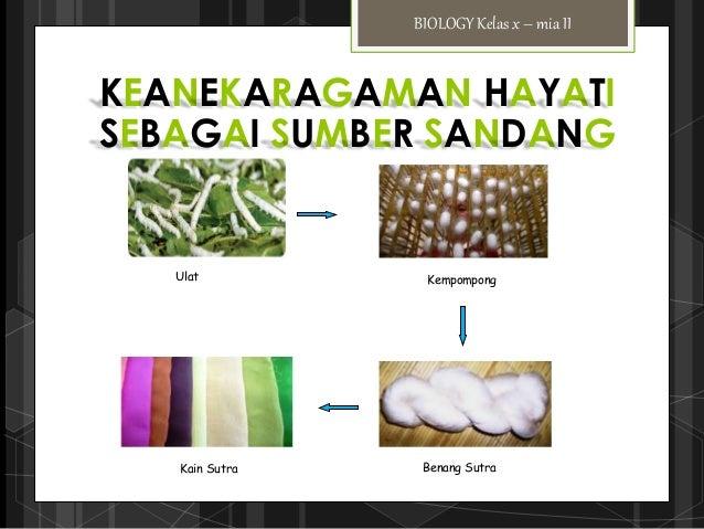 Presentasi biologi ( manfaat keanekaragaman makhuk hidup )