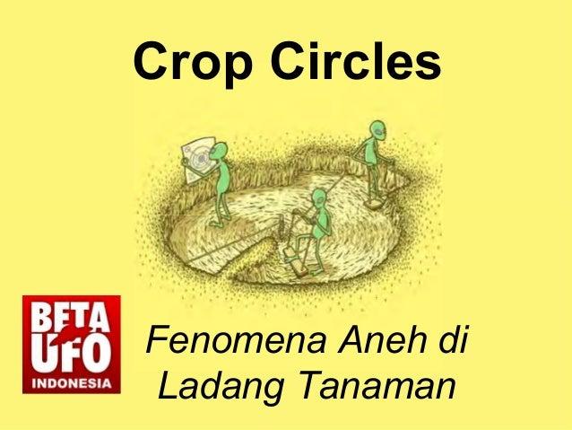 Crop Circles Fenomena Aneh di Ladang Tanaman
