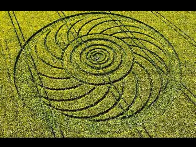 Crop Circle Slide 3