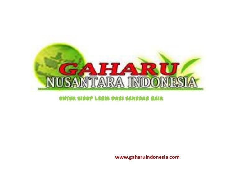 UNTUK HIDUP LEBIH DARI SEKEDAR BAIK                  www.gaharuindonesia.com