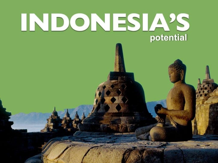 insight indonesia