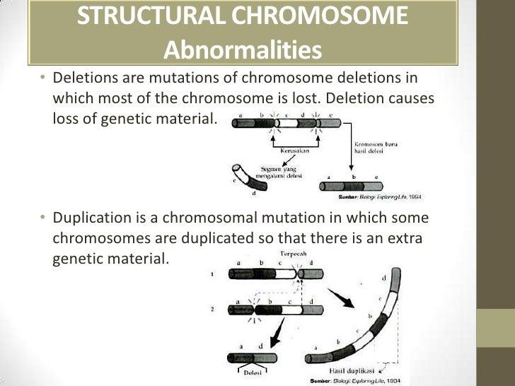 Presentasi kelainan kromosom ccuart Images