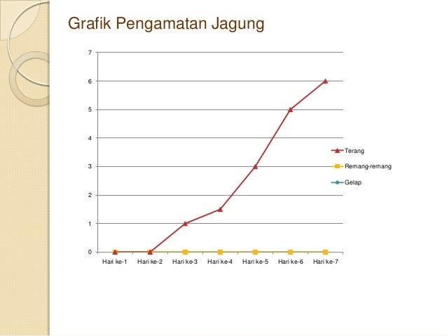 Presentasi Laporan Praktikum Pertumbuhan Dan Perkembangan Tanaman Ja