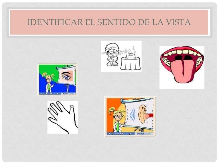 IDENTIFICAR EL SENTIDO DE LA VISTA