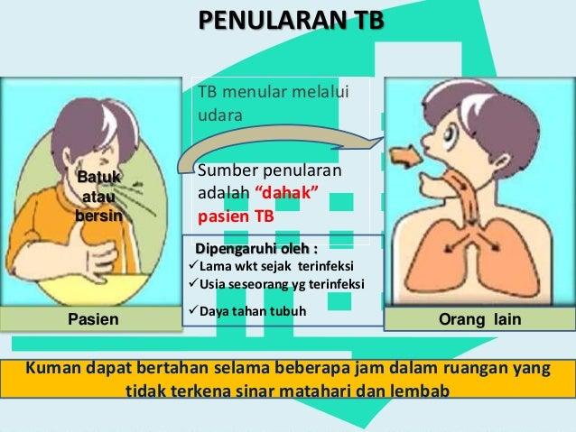 penularan TB
