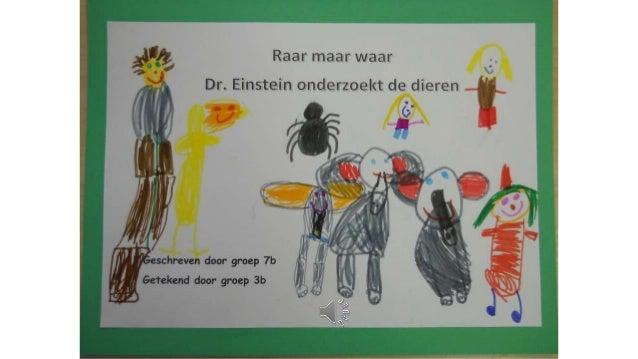 Dr. Einstein onderzoekt de dieren