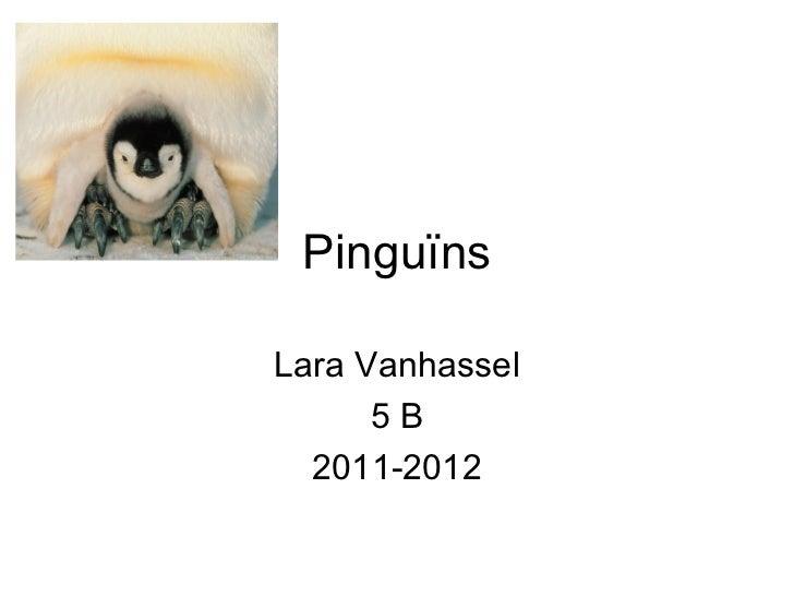 PinguïnsLara Vanhassel      5B  2011-2012