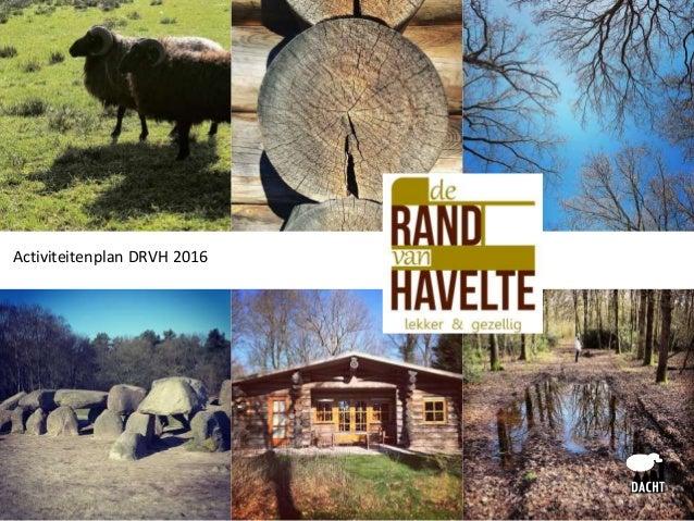 Activiteitenplan DRVH 2016