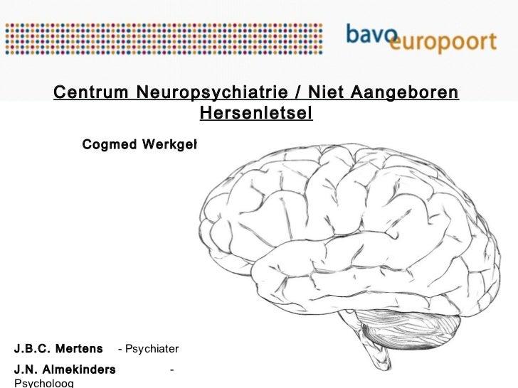 Centrum Neuropsychiatrie / Niet Aangeboren Hersenletsel Cogmed Werkgeheugentraining: Nieuwe kans voor mensen met NAH? J.B....