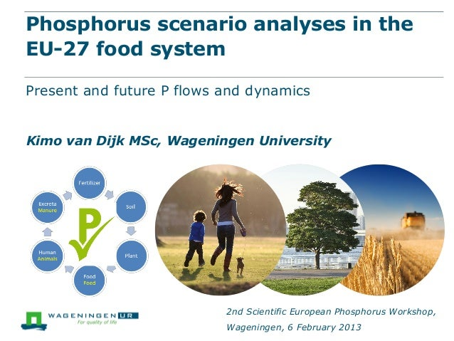 Phosphorus scenario analyses in the EU-27 food system Present and future P flows and dynamics Kimo van Dijk MSc, Wageninge...