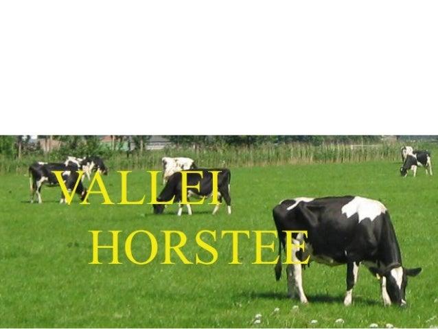 DLVDLV Sjoerd RoelofsSjoerd Roelofs Monique NieuwenhuisMonique Nieuwenhuis Boerenverstand/ETCBoerenverstand/ETC Frank Verh...