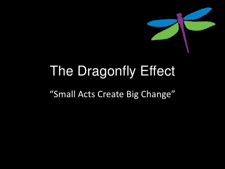 """The Dragonfly Effect""""Small Acts Create Big Change"""""""