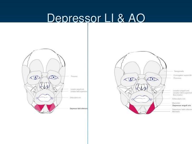 facial expression A.U