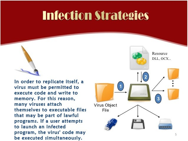 Signature based virus detection and protection system