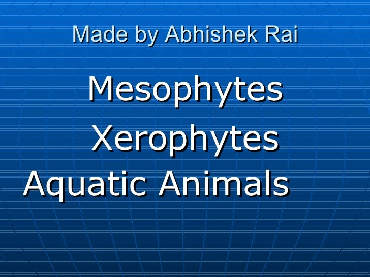 Made by Abhishek Rai <ul><li>Mesophytes </li></ul><ul><li>Xerophytes </li></ul><ul><li>Aquatic Animals   </li></ul>