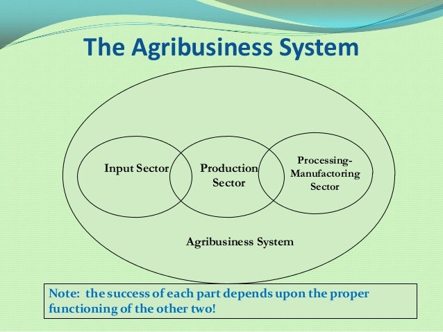 value addition and processing of agri products