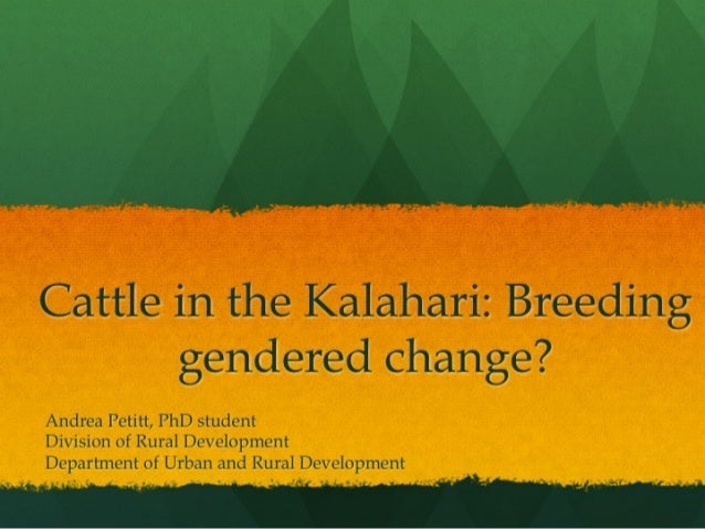 Cattle in the Kalahari: Breeding Gendered Change