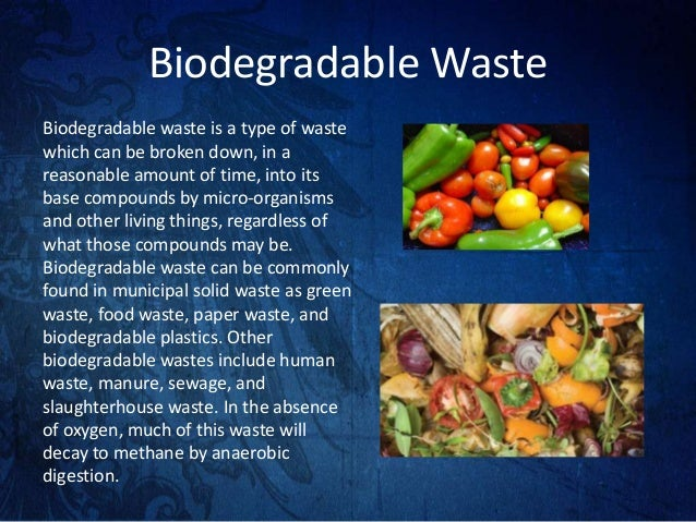 types of biodegradable waste