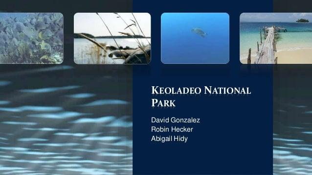 KEOLADEO NATIONAL PARK David Gonzalez Robin Hecker Abigail Hidy