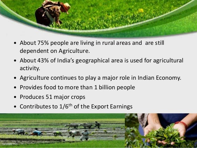  Total Geographical Area - 328 million hectares  Net Area sown - 142 million hectares  Gross Cropped Area – 190.8 milli...