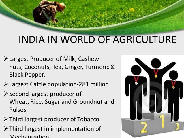 INDIAN AGRICULTURE SCENARIO STRENGTHS o Rich Bio Diversity o Arable Land o Climate OPPORTUNITES  Exports  Agro-based Ind...